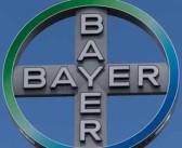 Kárpát Krisztina lett a Bayer Hungária Kft. ügyvezető igazgatója