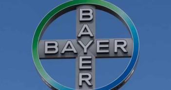 bayer-karpat-krisztina