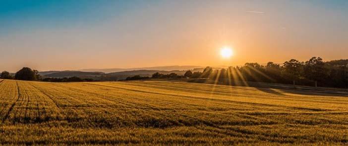 A termőföld előállítása, szállítása és felhasználhatósága